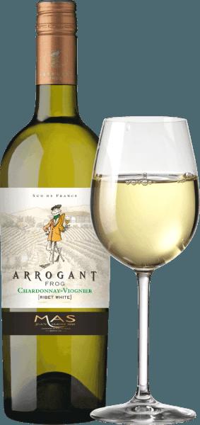 Arogant Frog 's Ribet Blanc to jedwabisty francuski cuvée białego wina produkowany z odmian winogron Chardonnay (70%) i Viognier (30%). W szklance wino to pojawia się w bogatym złocistym żółtym z zielonkawymi niuansami. Francuskie białe wino zachwyca eleganckim nosem, który łączy owocowe aromaty tropikalnych owoców, takich jak ananas i brzoskwinia, ze świeżymi owocami cytrusowymi z nutami wanilii. Owocowe aromaty nosa odbijają się również na podniebieniu. Jedwabiste, świeże ciało jest wsparte pięknie zbilansowaną kwasowością. To wino kończy się długim pogłosem. Winifikacja Ribet Blanc Chardonnay Viognier Arogant Frog Po zbiorze winogron zebrany materiał jest najpierw całkowicie usuwany w piwnicy. Dwie odmiany winogron dla tego wina są winifikowane oddzielnie. Moszcz fermentuje się w zbiornikach ze stali nierdzewnej w kontrolowanej temperaturze (maks. 18 stopni Celsjusza) przez około 3 tygodnie. 30% Chardonnay dojrzewa w beczkach dębowych - pozostałe 70%, a Viognier pozostaje w zbiornikach ze stali nierdzewnej. Rekomendacja jedzenia dla aroganckiej żaby Chardonnay Viognier Ciesz się chrupiącymi warzywami, sushi, śródziemnomorskimi owocami morza i daniami rybnymi, białym drobiem, deserami owocowymi i kuchnią azjatycką. Nagrody dla aroganckiej żaby Ribet Blanc Mundus Vini: Srebro za 2017 Mundus Vini: Złoto za 2016