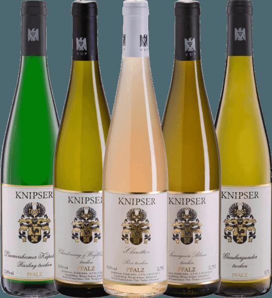 5er Kennenlernpaket - Weine vom Weingut Knipser